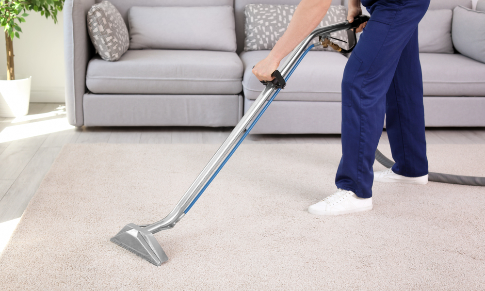Carpet Cleaning Professionals Along with their Services